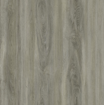 VINYL ECO30 068 lepený, 185x1219,2x2mm, Dockside Oak Natural Light (4,74 m2)